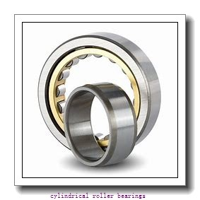 Link-Belt MU1211DX Cylindrical Roller Bearings