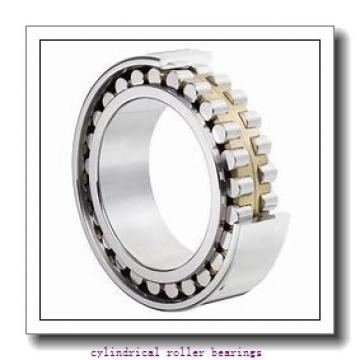 American Roller D 5221 Cylindrical Roller Bearings