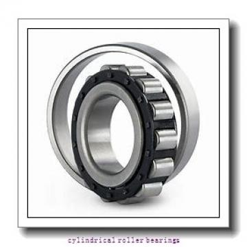 Link-Belt M1307TM Cylindrical Roller Bearings